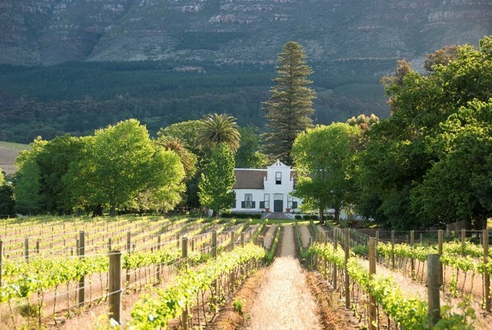 Table Mountain, Groot Constantia & Kirstenbosch Gardens
